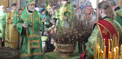 Вход Господень в Иерусалим: праздничная Божественная литургия в Александро-Невском кафедральном соборе г. Кирова