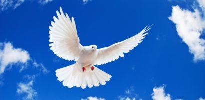 День Святого Духа. Божественная литургия